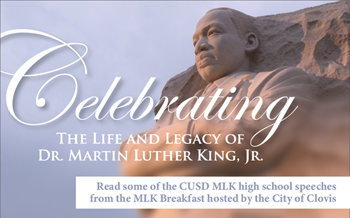 MLK Jr article
