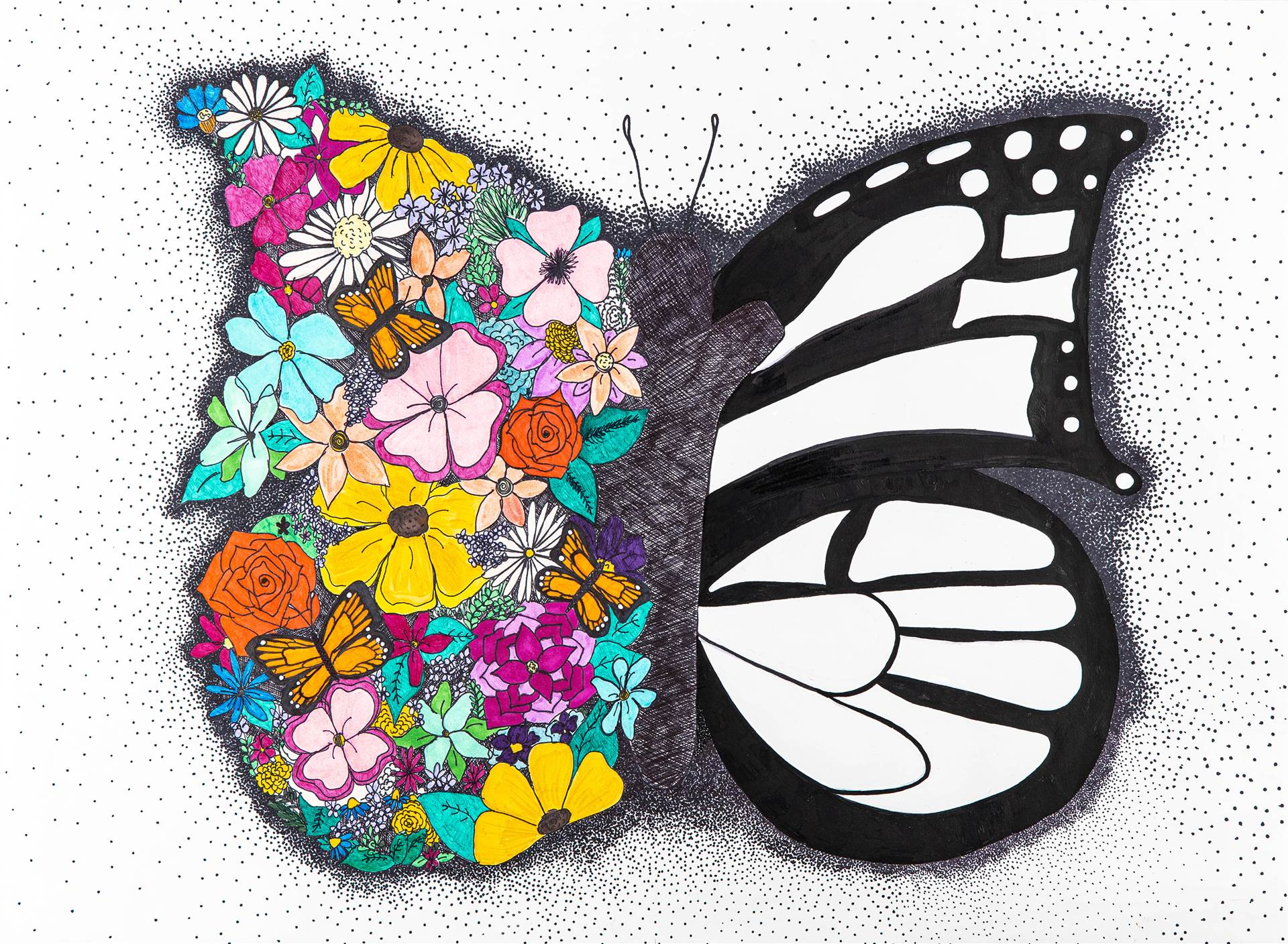 Butterfly drawing half black and white half colorred with fowers and other butterflies