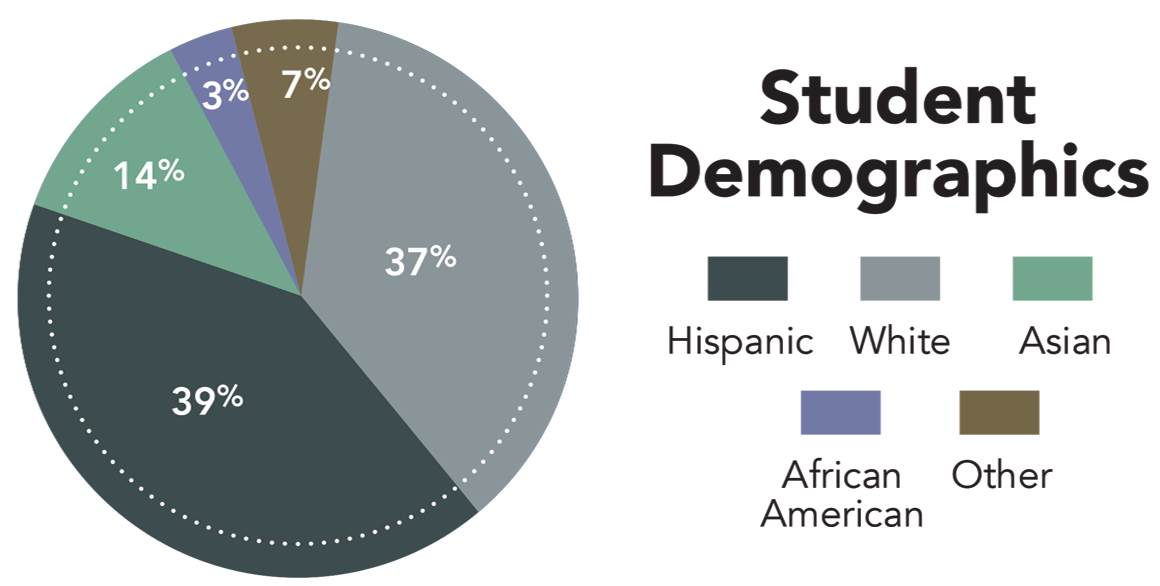 Student Demographics pie chart