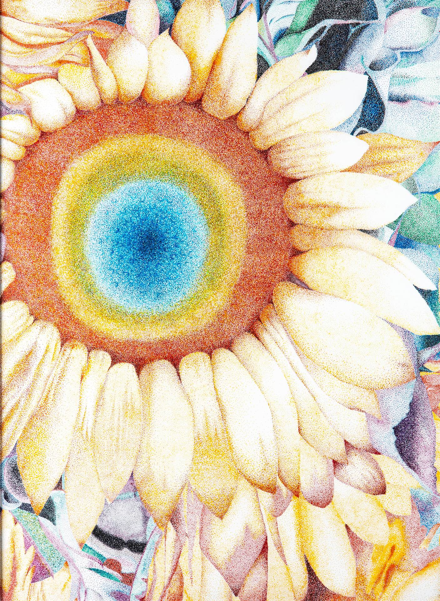 Drawing of Sunflower with rainbow middle