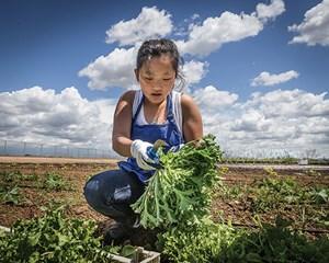 Girl farming